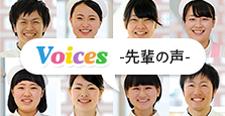 Voice -先輩の声-