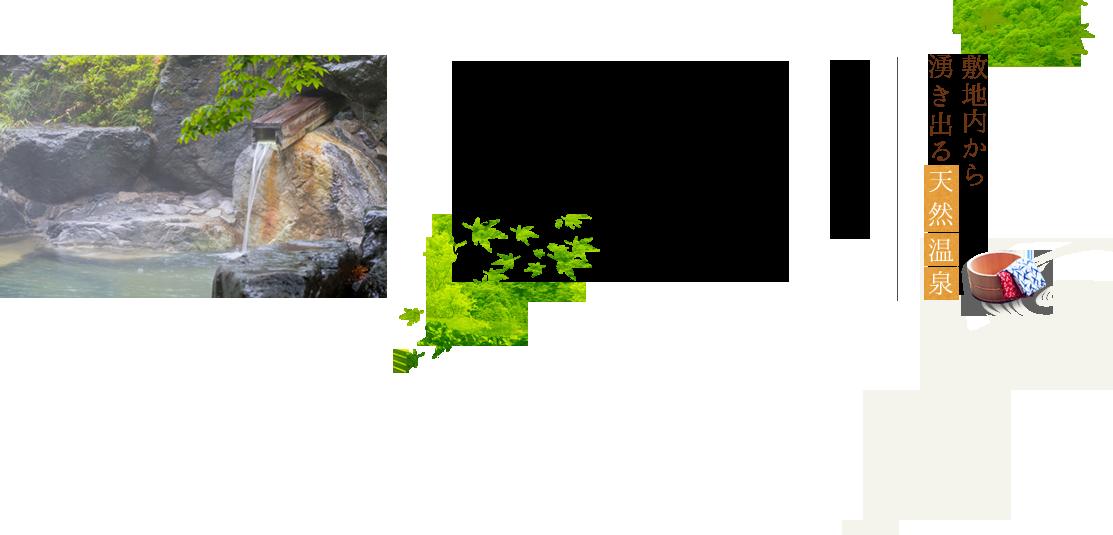 敷地内から湧き出る天然温泉 北アルプス、槍、穂高連峰の 山麓に位置する、ホテル穂高。  源泉からは、2種類の 良質な温泉が、常時湧き出ています。  湧出量が豊富ですので、 常にかけ流しの、新湯溢れる 大自然そのままのお風呂が お楽しみいただけます。  天然温泉に身をゆだね、 体をゆっくり癒した後は 旬の山川の幸、飛騨牛など 素材を生かしてお作りする 穂高風会席膳をお楽しみ下さい。