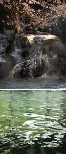 源泉かけ流し温泉 殿湯