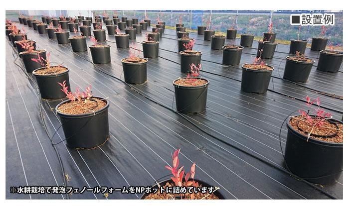 発泡フェノールフォーム(アクアフォーム) 粒状 20L 家庭菜園用 お試し用