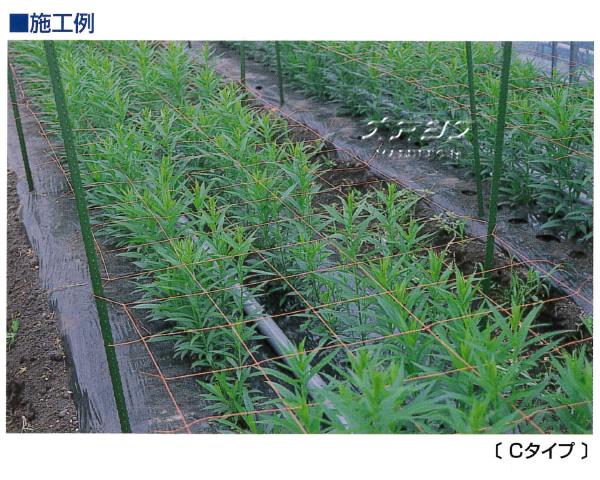 東京戸張 フラワーネット Cタイプ C152 15cm角 2目 0.30m*100m 茶 400dX24本撚糸