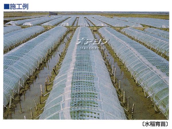 東京戸張 開閉式農ポリ ポリホール フタ幅 100cm 0.07mm 2.1m*50m 2本セット